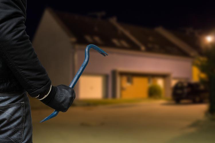 Deter Burglars