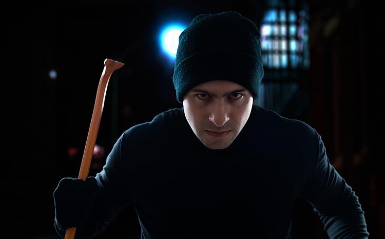 Detering Burglar